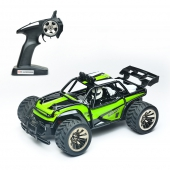[BG1512]1:16 2WD High Speed RC Car 15 km/h 2,4 GHz Ferngesteutes Auto Buggy